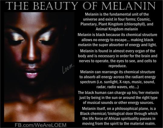 Image result for melanin